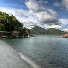 Pangkor Harbour by Adrian Evans