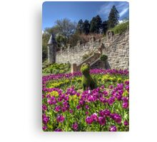 Belfast Castle Cat Canvas Print