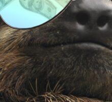 Bling Sloth Sticker