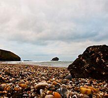Gull Rock by Paul Howarth