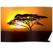 Sunrise over Serengeti Poster