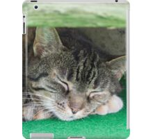 cute cat sleeping under the bench iPad Case/Skin