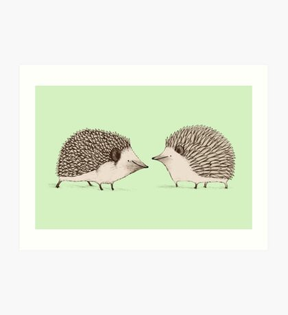 Two Hedgehogs Art Print