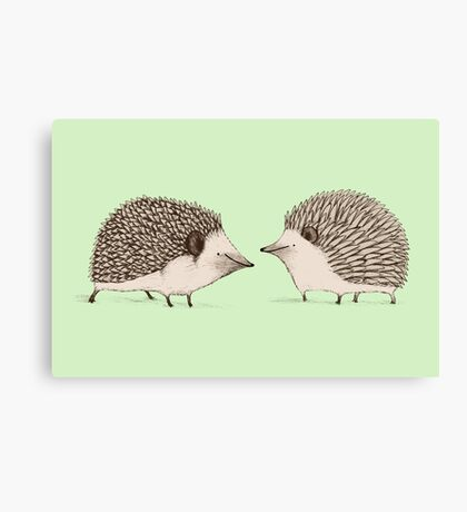Two Hedgehogs Canvas Print