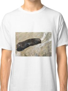 New Zealand Fur Seal Classic T-Shirt