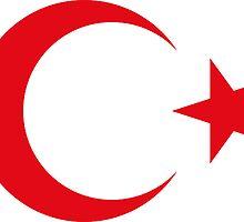 Turkish Crescent Moon Star Flag National Turkey Symbols Sticker T-Shirt Duvet by deanworld