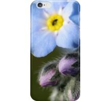 Forget-Me-Nots 6 iPhone Case/Skin