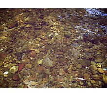 Creek Bottom Photographic Print