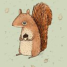 Sarah the Squirrel by Sophie Corrigan