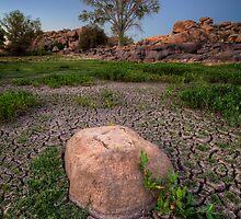 Dry Lush by Bob Larson