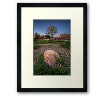 Dry Lush Framed Print
