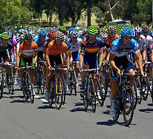 The Peleton climbing Montefiore Hill, Stage 6, City Circuit, Tour Down Under 2012 by Steven Weeks