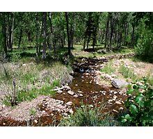 Beaver Creek Photographic Print