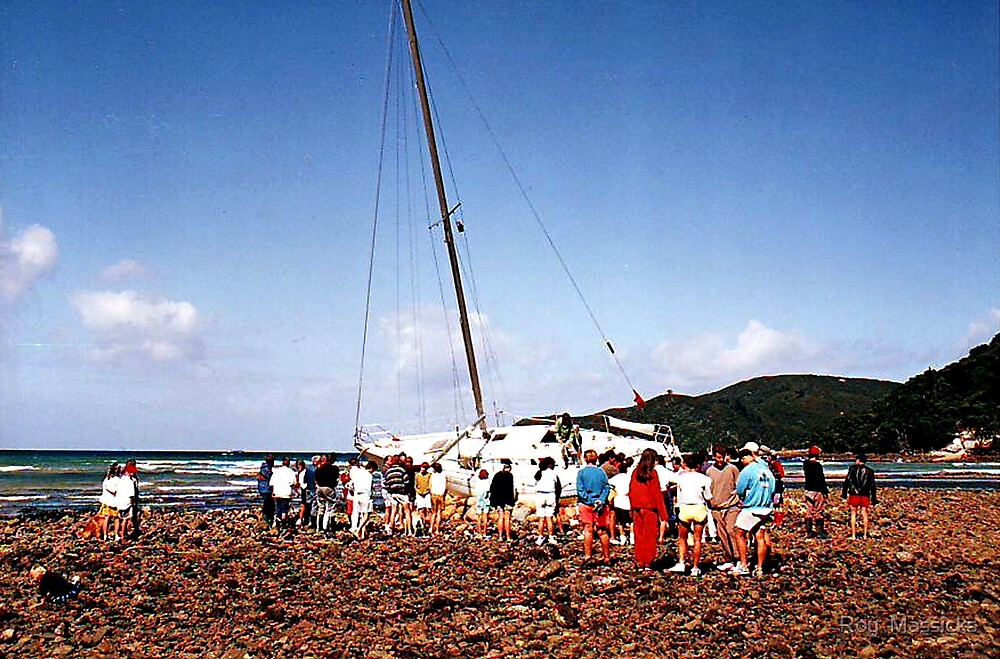 Aground, Great Barrier Island - Part 1............! by Roy  Massicks