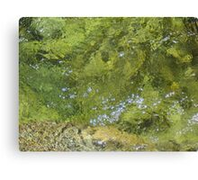 Rushing water below Yosemite Falls Canvas Print
