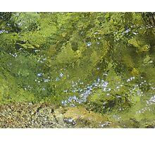 Rushing water below Yosemite Falls Photographic Print