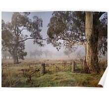 Winter in the Riverina Poster