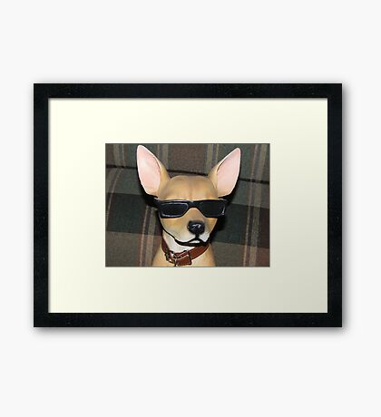 The COOL Dude....... Framed Print