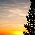Rocky Mountain Sunrise - 1 by JRRouse
