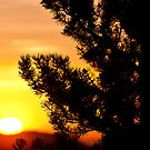 Rocky Mountain Sunrise - 2 by JRRouse