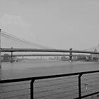 Brooklyn Bridge  by Nicole  Markmann Nelson