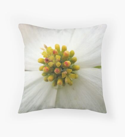Dogwood flower Throw Pillow