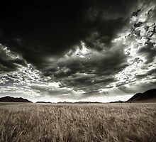 Under a Black Cloud by Jill Fisher