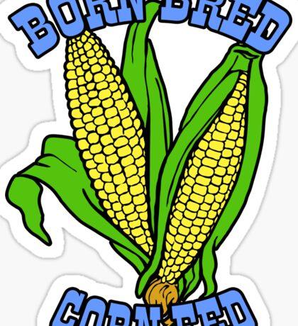 BORN BRED CORN FED (light blue) Sticker
