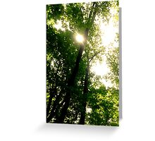 INTO THE TREE WE GO Greeting Card