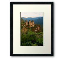 The Sisters with fernery Framed Print