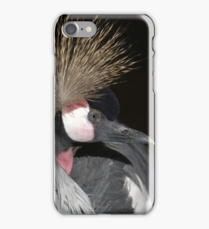 Grey Crowned Crane iPhone Case/Skin