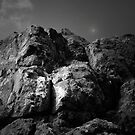 THE ROCK by leonie7
