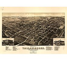 Panoramic Maps View of the city of Tallahassee State capital of Florida county seat of Leon county 1885 Photographic Print