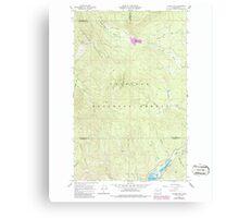 USGS Topo Map Washington State WA Aladdin Mtn 239768 1967 24000 Canvas Print