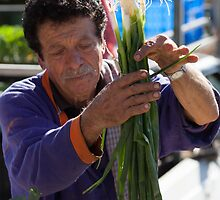 Farmers Market Spring Onions by Jules Cardinale