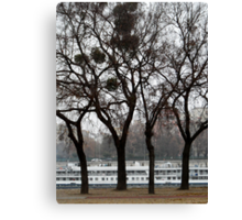 Danube River Bank, Budapest Canvas Print