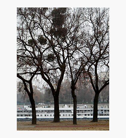 Danube River Bank, Budapest Photographic Print