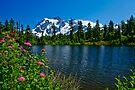 Mount Shuksan and Highwood Lake by Dan Mihai
