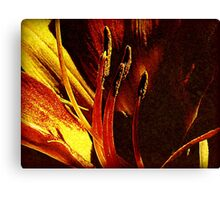 Conjured Up Canvas Print
