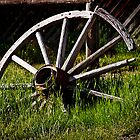 Wagon Wheel by Jason Thomas