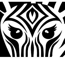 Black & White Zebra Face Photographic Print