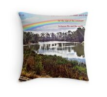 The Rainbow - Covenant - Genesis 9:13 Throw Pillow