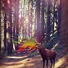 Oh deer! by daspixel