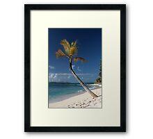 Beach View, Palm Island, Grenadines. Framed Print