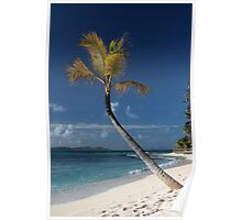 Beach View, Palm Island, Grenadines. Poster