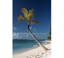 Beach View, Palm Island, Grenadines. Photographic Print
