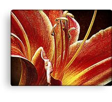 Itty Bitty Coquetry Strands Canvas Print