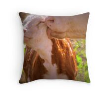 Special Feelings Throw Pillow