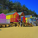Beach Huts and Pine Trees 2 by Chris Thaxter