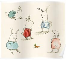 If Rabbits Wore Pants Poster